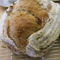 ル・ヴァンで発酵するカンパーニュは味わい深い