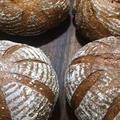 天然酵母パンコース 葡萄種のカンパーニュ