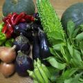 毎回、旬のお野菜をたっぷり使えるメニューをご紹介します!
