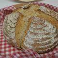 レーズン酵母 国産ライ麦と全粒粉入りカンパーニュ