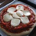 ピザ。モッツアレラをのせたところ