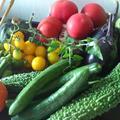 旬のお野菜山盛りです