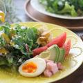 有機無農薬野菜たっぷりのサラダメニュー