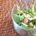 【気を巡らす薬膳】春菊と亜麻仁オイルの簡単サラダ