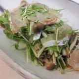 鯛昆布〆と水菜、山独活のサラダ