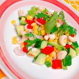 超時短!カラフル夏野菜と生カシューナッツのサラダ