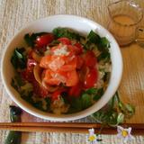 きれいな鮭丼ご飯