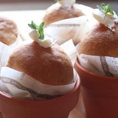 植木鉢にハーブのパンを焼きましょう