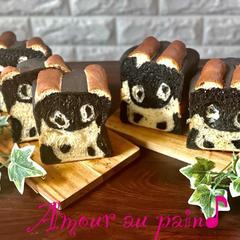 1月の特別講習は干支パンシリーズの『ウシ🐮食パン』