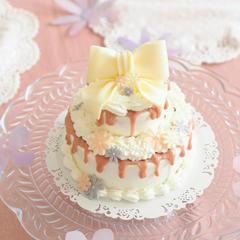テクニカルレッスン   2段のドリップケーキ