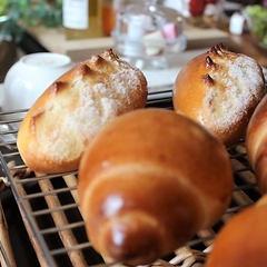 基本コースは難易度の高いパンも習得します。