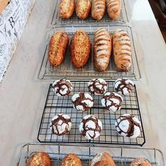 2種類のコッペパンとチョコレートクリンクル、成形上手です!