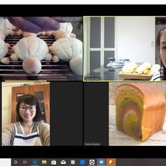 オンライン カメロンパン