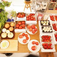 3月やさい塾のテーマはセロリ、玉ねぎ、筍、トマト、いちご。