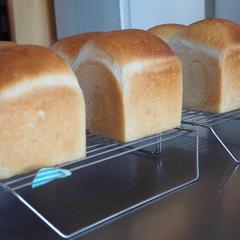 食パンできましたー!!