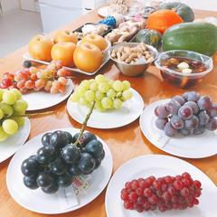 〈やさい塾開講中♬〉野菜の目利きができるようになりますよ!