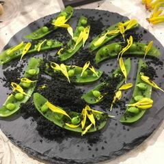 新鮮なサラダとオレンジ炭のパウダー