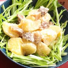神戸ぼっかけポテトサラダ