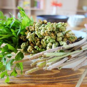 九州の旬野菜果物を楽しむ家庭料理   永利裕子料理教室