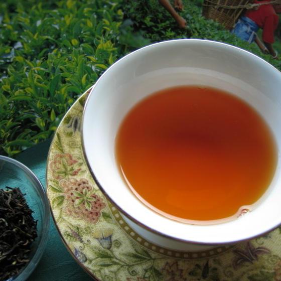 TEA STUDIO 茶楽園(テラス)