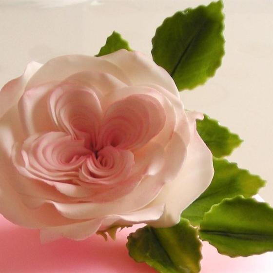 シュガーフラワーのお花作り