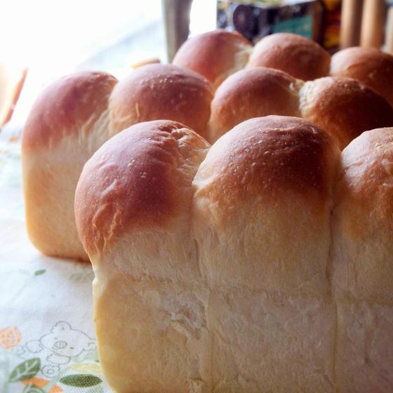 カルピスミニ食パン・あんフロマージュ・チーズウインナードッグ