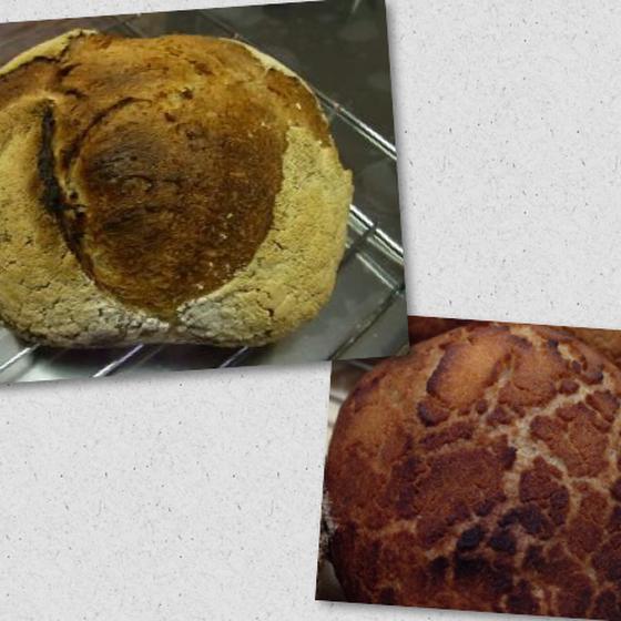 【自家製酵母】パン ド カンパーニュ・ビア