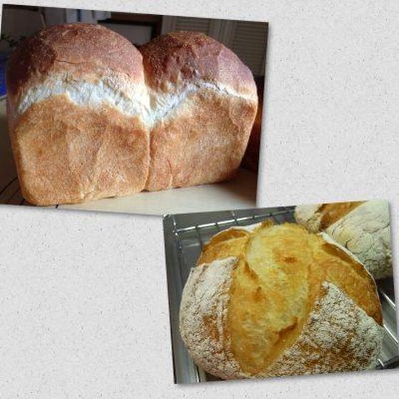 【自家製酵母】食パン・米粉のペイザン