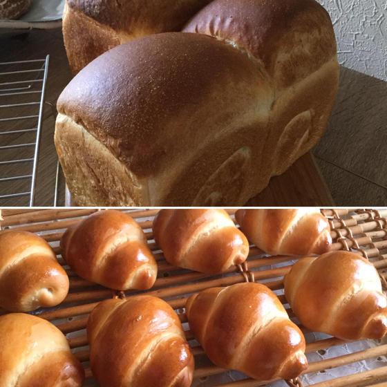 酒種酵母パン初めましてレッスン