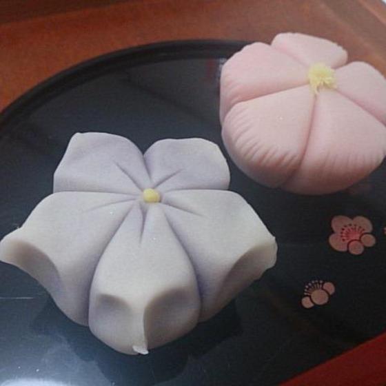 【和菓子】「練り切り~桔梗&撫子~」8月レッスン