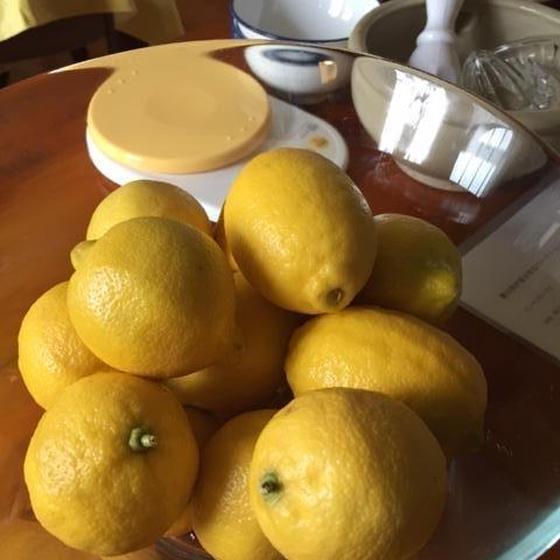 旬の保存食レッスン~新生姜、赤紫蘇、レモン