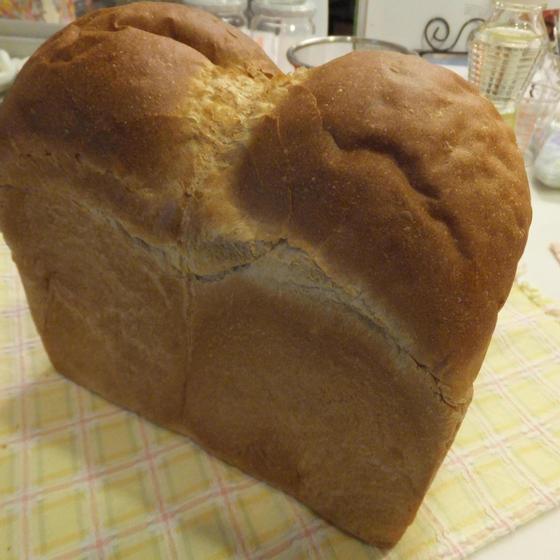 単発パンレッスン2種 (山型食パンとチーズバンズ)
