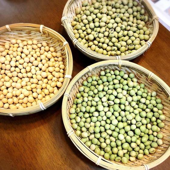 天然醸造、無添加!手作り味噌教室(麦麹、米糀、合わせ麹)