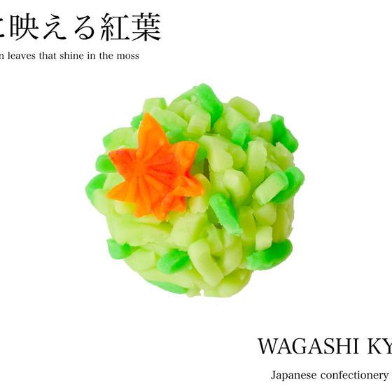 【湘南藤沢和菓子づくり】苔に映える紅葉〜練り切り〜