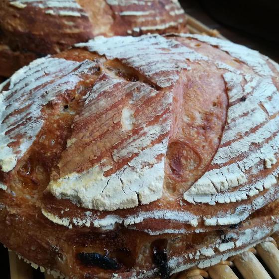 季節のパンレッスン