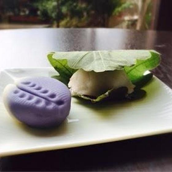"""春の生菓子と言えば""""柏餅""""、他に煉り切り製の""""藤の花"""""""