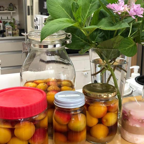 初心者のための梅干し作り♪ & 梅と新生姜の料理(香芝)