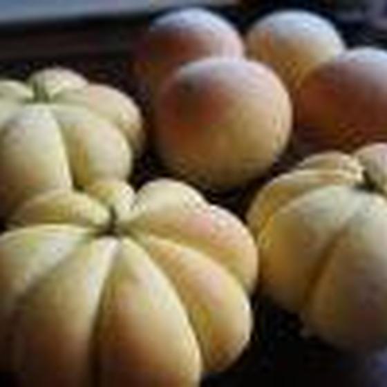 10月かぼちゃパン予定