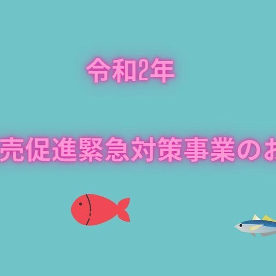 2月はまもなく予約開始 お魚をご自宅にお届けするレッスン】