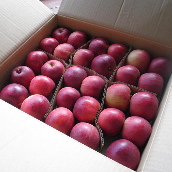 りんごClass①「ルー・タレ・ドレ・ピュレ~基本の調味料」