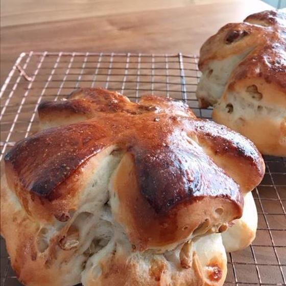 《微量イースト》手捏ねパンレッスン 大きな大きなくるみぱん