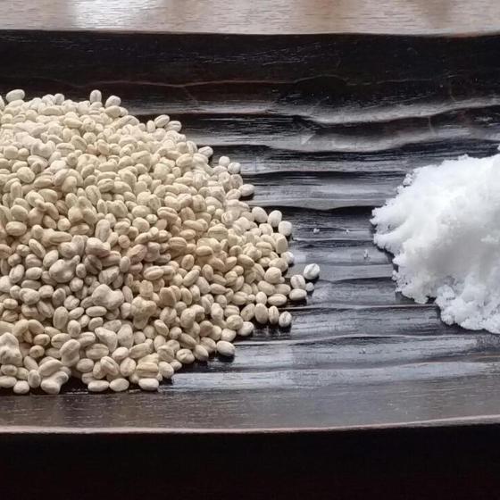 【発酵基礎】& 麦塩麹を作ろう!