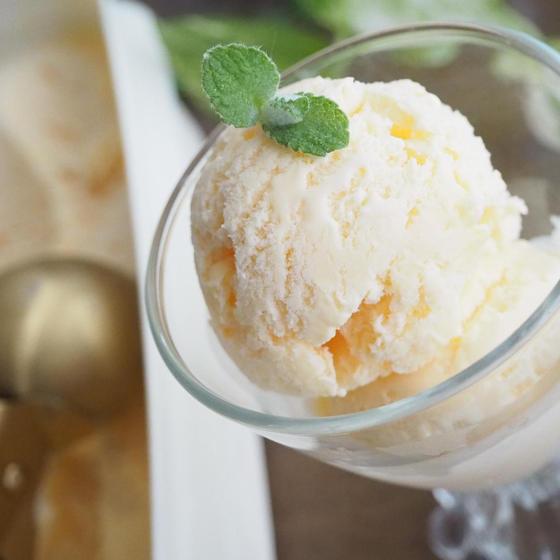手作りアイスクリーム教室
