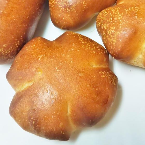 基本のパン作り(生地の扱いと道具の使い方)