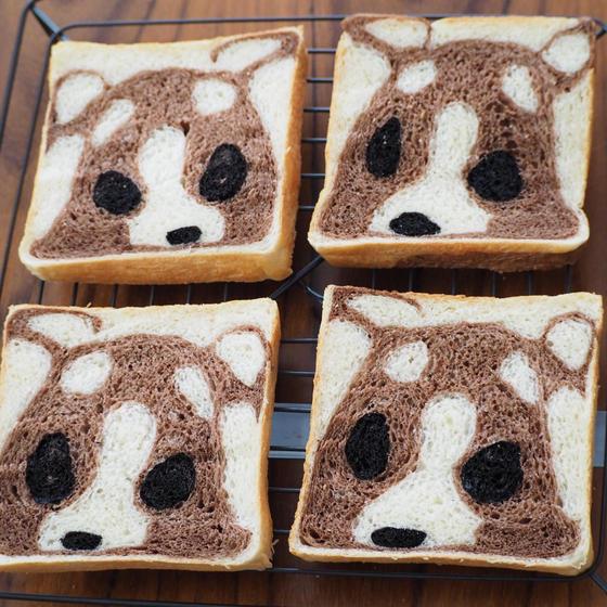 【オンラインレッスン】チワワの食パン