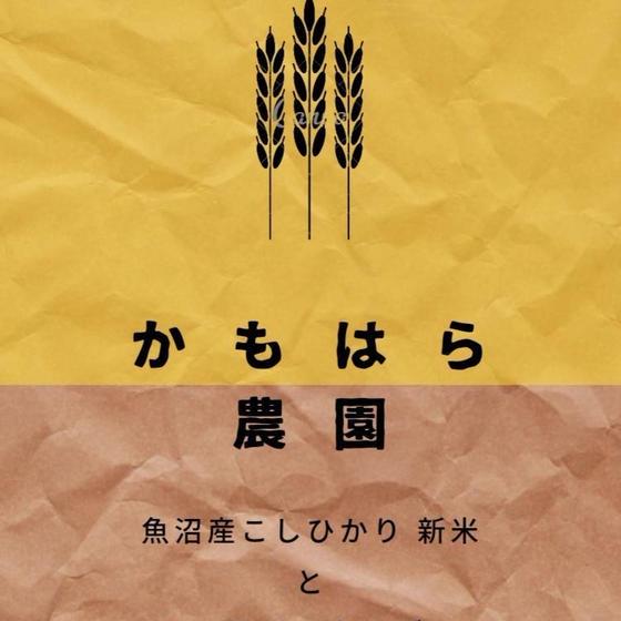 【ベトナム料理】かもはら農園の新米と合わせたベトナムおかず