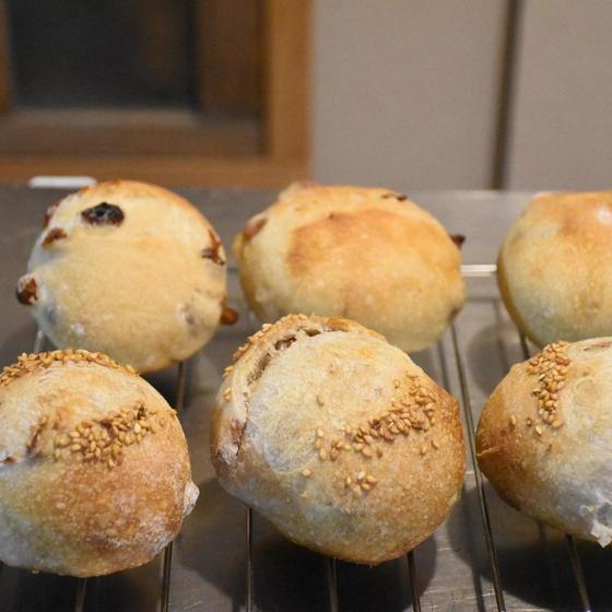 初めてのレーズン酵母〜レーズン酵母でパンを焼く〜