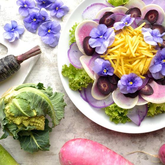 野菜の料理教室ERBA