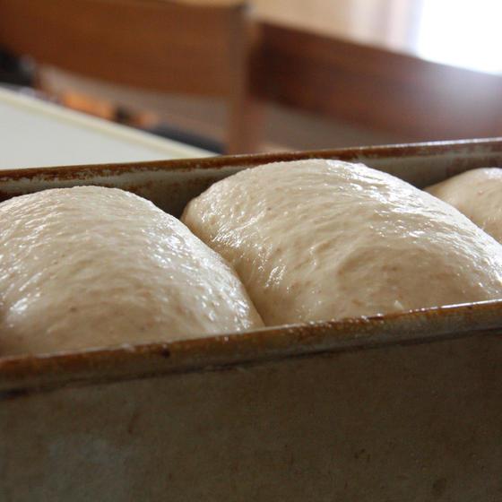 Natural baking   あこ天然酵母パン教室