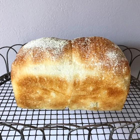 天然酵母 パン教室